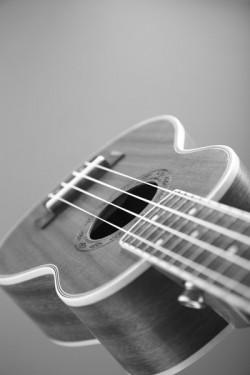 ukulele-bw